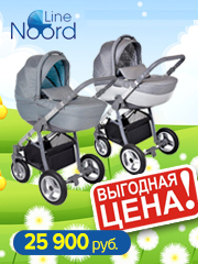 Детские универсальные коляски Noordline Amelis